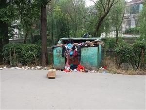 垃圾集中点,多日没清理。