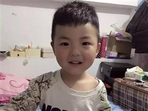 【萌宝秀场】刘启航