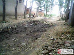 这就是村民们,每当下雨要走的路。