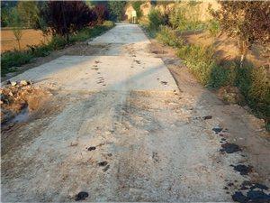 马路修成渠,一路猪粪气。