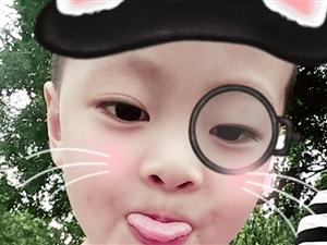 【萌宝秀场】阳家骏