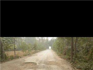 道路严重损坏