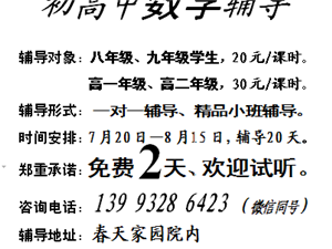 岷县中小学数学辅导