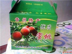 零售批发各种桃