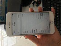 国行金色苹果手机