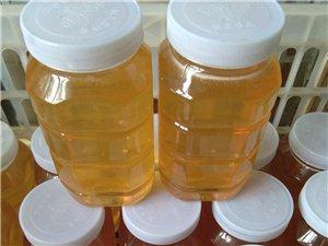 出售云蒙山纯正野百花蜂蜜,假一赔十。