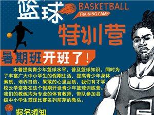 暑假篮球训练营