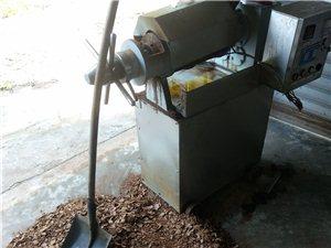 家用电的榨油机,优势大,随时可榨油