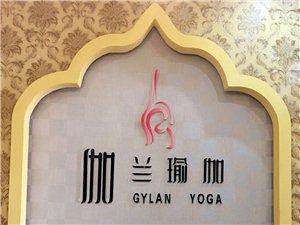 伽兰瑜伽Cara韩式半永久私人订制