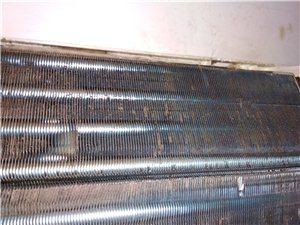 上门服务 专业清洗空调 洗衣机 油烟机
