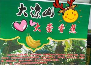 大崇香蕉不进农贸市场了