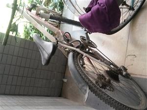 低价出品牌山地自行车