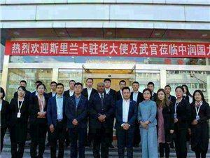 中潤國際新能源電動車