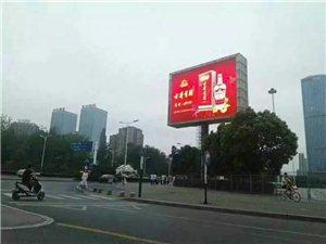安徽古井贡酒1979火热招商中!