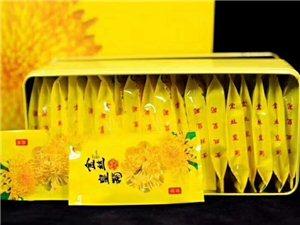 菊花种植销售