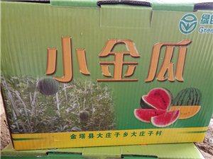 优质小金瓜,送礼最佳选择