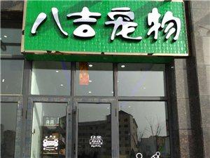 八吉宠物店新店开业
