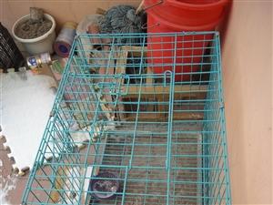 狗笼或兔笼出售90一个