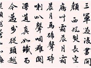 德昌县青少年活动中心书法班
