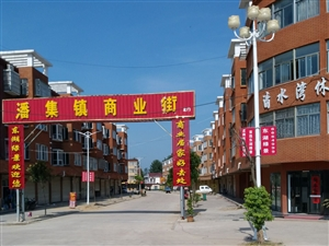 潘集镇商业街