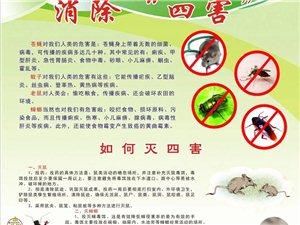 室内环境消毒,灭蚊蝇,灭蟑螂,灭白蚁等