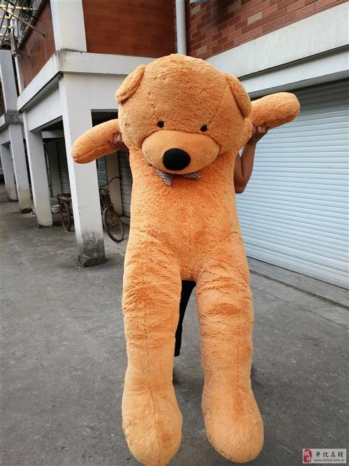 大熊,城东自取