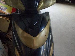 招远出售闲置立马电动摩托车寻买主