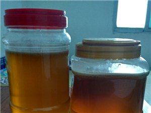 正宗绿色无污染农家土蜂蜜自产自销