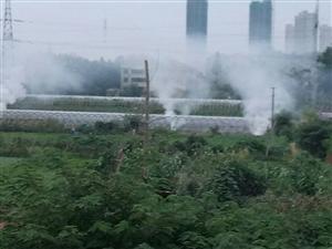 家和小�^�γ娼�常焚��秸�,污染空�狻�