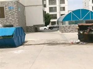 ~★垃圾要过年啦★~~~