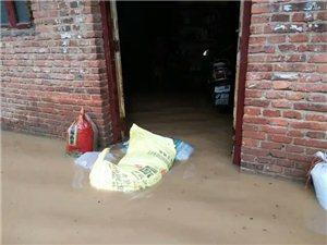江西禾�S下堡圩遭受洪水�暮�