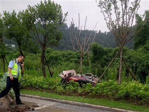 车祸猛如虎,谨慎驾驶