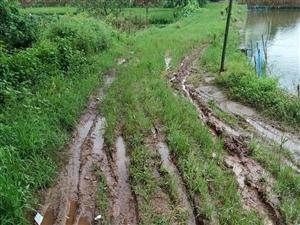 修不起的��泥巴公路