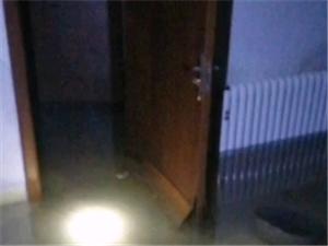 木海街11�,�店商服,�店地下室�成游泳池!