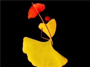 用创意留住秋叶的美丽,用创意记录生活的点滴!