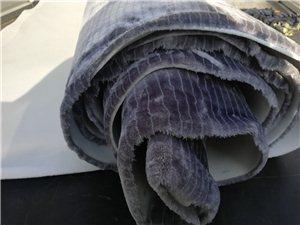 谁掉的毛毛布,赶紧招领!