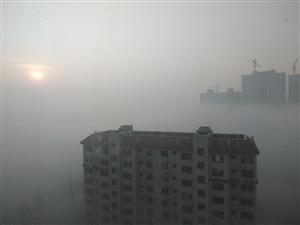 �F中博城