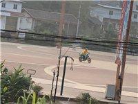 丝毫不怕?富顺广场上天天有人骑改装摩托车秀车技!富顺交警快来看看。