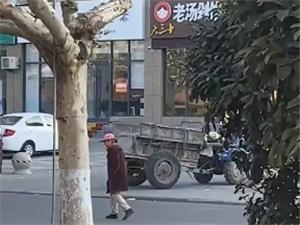 翰林�A府南�T沿街�^往��v注意躲避老人