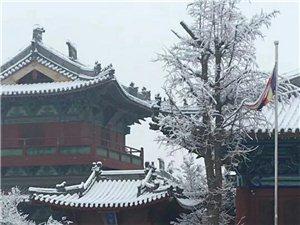 最美�V��寺