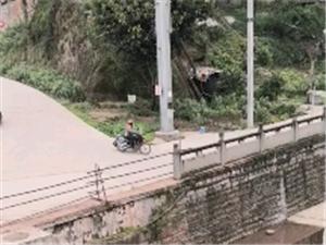【已回复】护城河污水排放依然严重