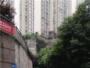 关于宏帆一期幸福里B区六栋下面生活垃圾桶放在消防通道上