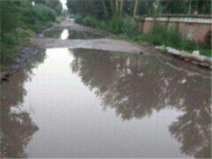�@就是中期的道路,科右中期三中道路�水塘了,年年如此�]人管�]人��,