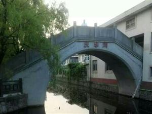 美丽的浦东合庆公园