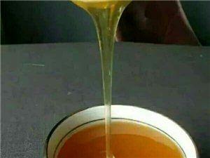 纯正的中蜂蜂蜜