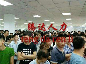 郑州、江苏、上海电子厂免费电脑下注官网