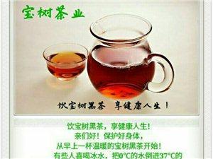 有空您就泡泡茶!