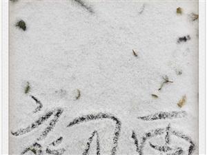 2016年的第一场雪