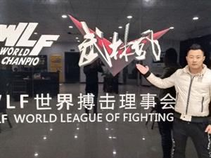 武林风中外环球拳王争霸赛潢川站