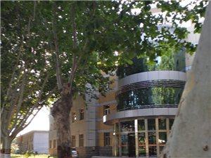 达沃斯9楼,东楼头两室95平简装,带储藏间,70万可议价急售13931974755